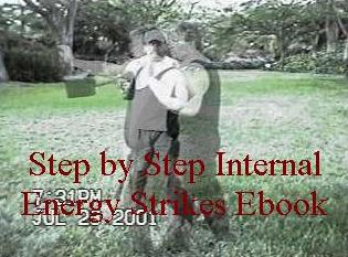 Step by Step Learn Martial Arts Internal Energy Strikes Ebook